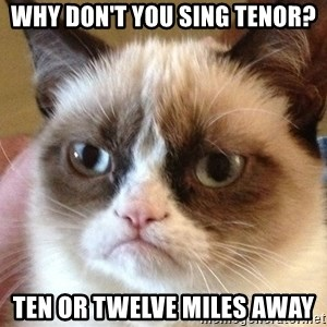 Angry Cat Meme - why don't you sing tenor? ten or twelve miles away