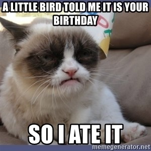 Birthday Grumpy Cat - a little bird told me it is your birthday so i ate it
