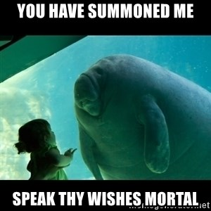 Overlord Manatee - you have summoned me speak thy wishes mortal