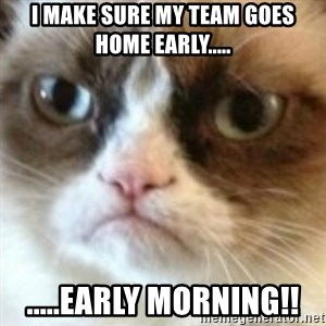 angry cat asshole - I make sure my team goes home early..... .....early morning!!
