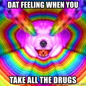 Final Advice Dog - dat feeling when you take all the drugs
