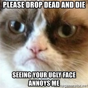 angry cat asshole - please drop dead and die seeing your ugly face annoys me