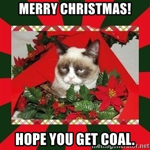 GRUMPY CAT ON CHRISTMAS - Merry Christmas! Hope you get coal.
