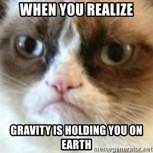 angry cat asshole - When You Realize Gravity is holding you On Earth