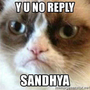 angry cat asshole - y u no reply sandhya