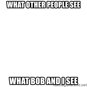 Blank Template - What Other people see What Bob and i see