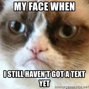angry cat asshole - My face when  I still haven't got a text yet