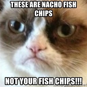 angry cat asshole - these are nacho fish chips not your fish chips!!!