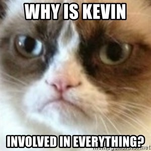angry cat asshole - Why is kevin  involved in everything?