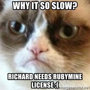 angry cat asshole - why it so slow? Richard needs RubyMine license :(