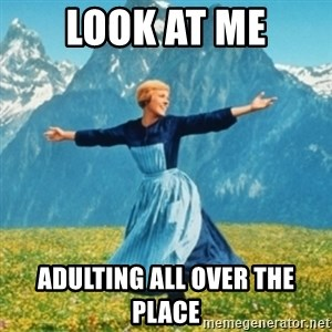 Sound Of Music Lady - Look at Me Adulting All Over the Place