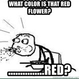 Cereal Guy Spit - What color is that red flower? ...............Red?