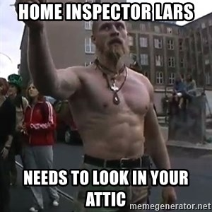 Techno Viking - home inspector lars needs to look in your attic