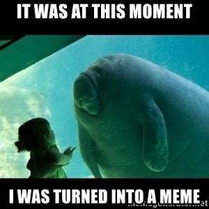 Overlord Manatee - It was at this moment i was turned into a meme