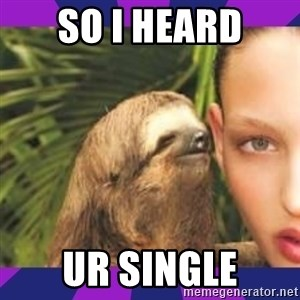 Perverted Whispering Sloth  - So i heard Ur single
