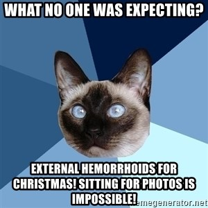 Chronic Illness Cat - What no one was expecting? external hemorrhoids for Christmas! Sitting for photos is impossible!