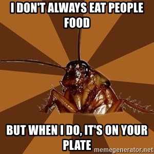 Eat The Cockroach - I don't always eat people food but when I do, it's on your plate