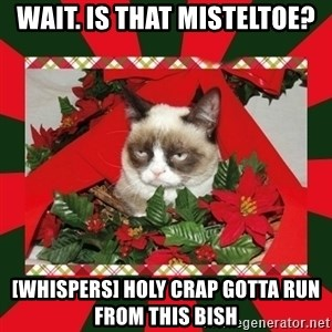 GRUMPY CAT ON CHRISTMAS - wait. is that misteltoe? [whispers] holy crap gotta run from this bish