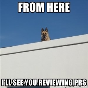 Roof Dog - from here i'll see you reviewing prs