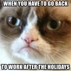 angry cat asshole - when you have to go back to work after the holidays