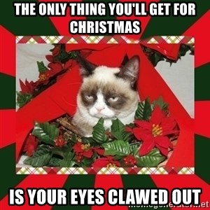 GRUMPY CAT ON CHRISTMAS - the only thing you'll get for christmas is your eyes clawed out