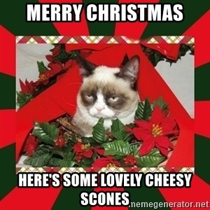 GRUMPY CAT ON CHRISTMAS - merry christmas  here's some lovely cheesy scones