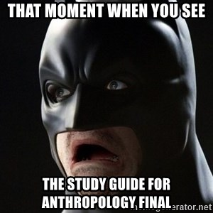 Shocked Batman - That moment when you see The study guide for Anthropology final