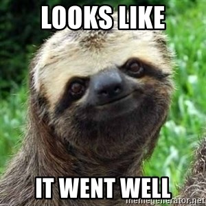 Sarcastic Sloth - Looks like it went well