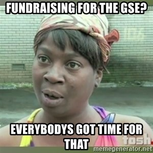 Everybody got time for that - FUNDRAISING FOR THE GSE? EVERYBODYS GOT TIME FOR THAT