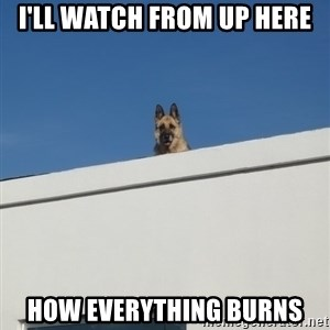 Roof Dog - i'll watch from up here how everything burns