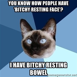 Chronic Illness Cat - You know how people have 'Bitchy Resting Face'? I have Bitchy Resting Bowel