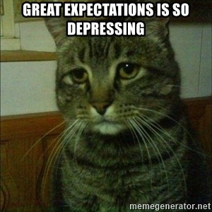 Depressed cat 2 - Great Expectations is so depressing