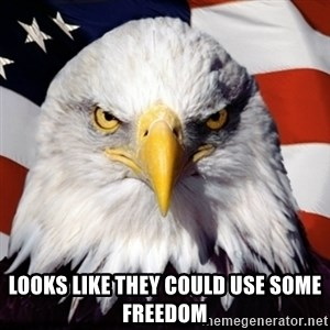 Freedom Eagle  -  LOOKS LIKE THEY COULD USE SOME FREEDOM