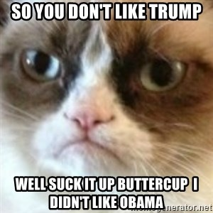 angry cat asshole - So you don't like trump Well suck it up buttercup  I didn't like obama