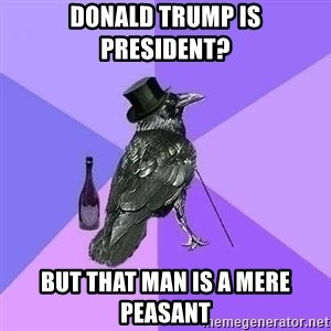 Rich Raven - Donald Trump is president? But that man is a mere peasant