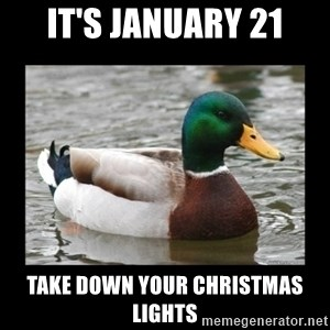 advice mallard - It's January 21 Take down your christmas lights