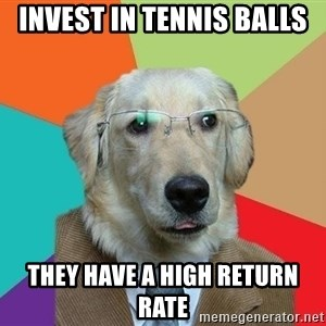 Business Dog - Invest in tennis balls They have a high return rate