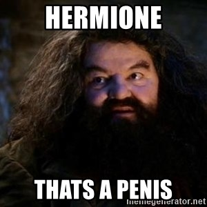 Yer A Wizard Harry Hagrid - Hermione Thats a penis