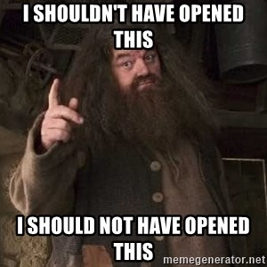 Hagrid - I shouldn't have opened this i should not have opened this