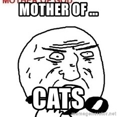 Mother Of God - Mother of ... cats
