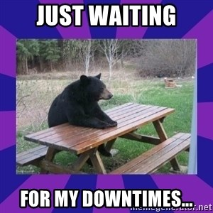 waiting bear - Just waiting for my downtimes...