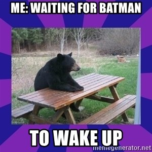 waiting bear - Me: Waiting for batman To wake up