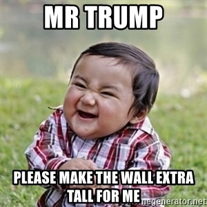 evil toddler kid2 - mr trump please make the wall extra tall for me