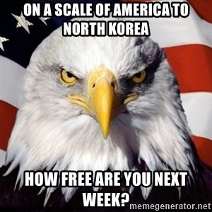 Freedom Eagle  - On a scale of America to North Korea How free are you next week?
