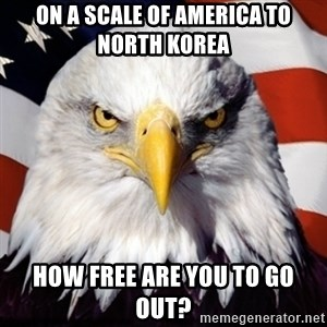 Freedom Eagle  - On a scale of America to North Korea  How free are you to go out?
