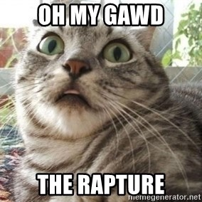 scared cat - Oh my gawd The RAPTURE