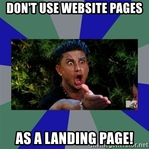 jersey shore - DON't USE WEBSITE PAGES AS A LANDING PAGE!