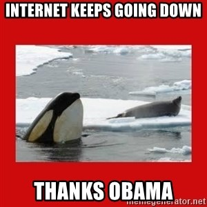 Thanks Obama! - internet keeps going down thanks obama
