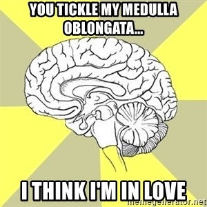 Traitor Brain - You tickle my medulla oblongata... I think i'm in love
