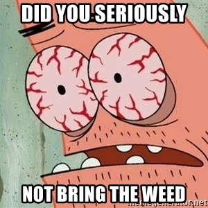 Stoned Patrick - Did you SERIOUSLY  NOT BRING THE WEED